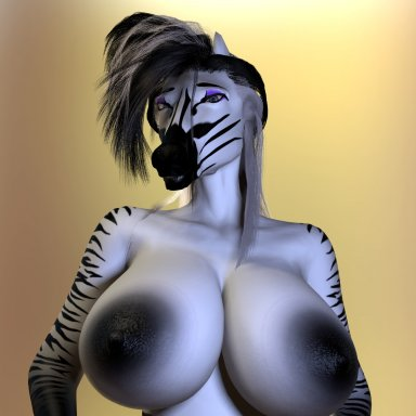 Zebra Alpha1.0 Release!