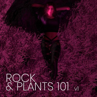 Rocks and Plants 101 v1