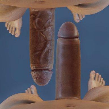 Genital Veins