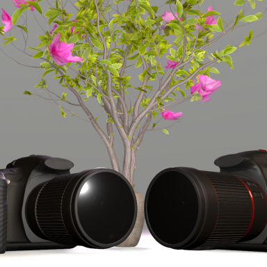 Functional DSLR All in one