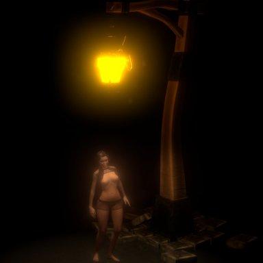 Lantern with fireflies