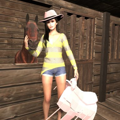Cowboy and Cowgirl Asset Sets
