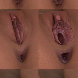 New genital textures