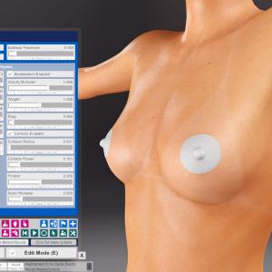 CuteSvetlana.Nipple Skin Graft-Physics Settings (2).png