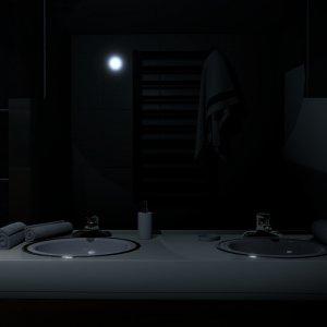 Bathroom shot 03